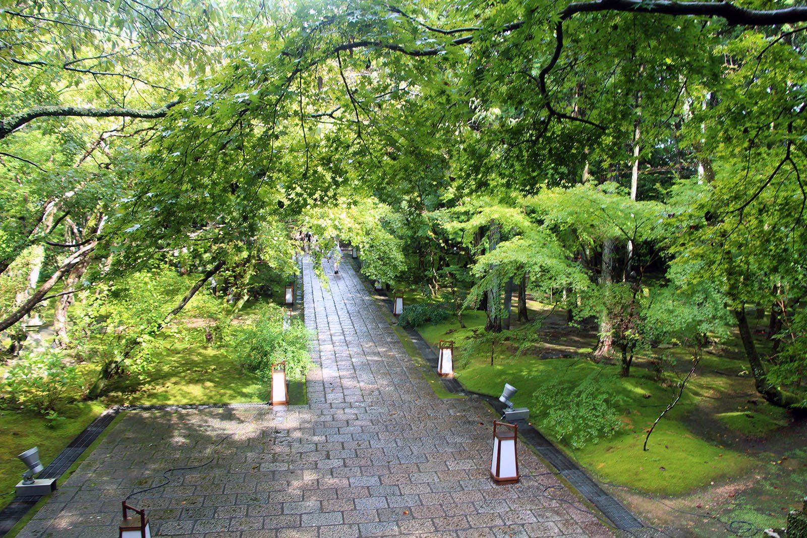 Chikurin-ji temple Shikoku_16