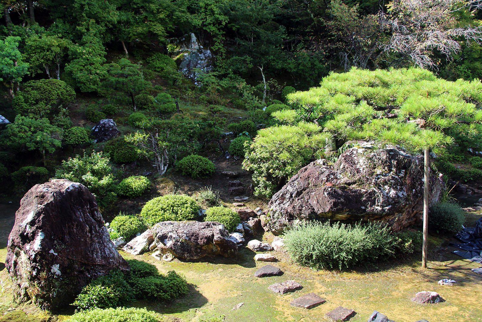 Chikurin-ji temple Shikoku_20