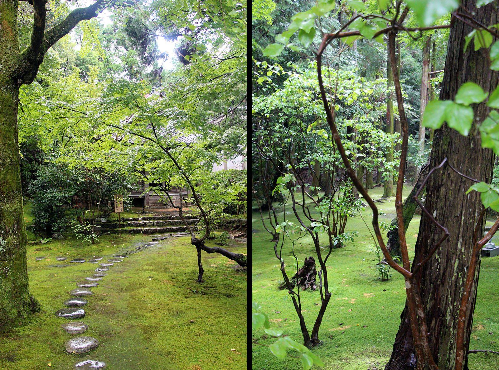 Chikurin-ji temple Shikoku_29