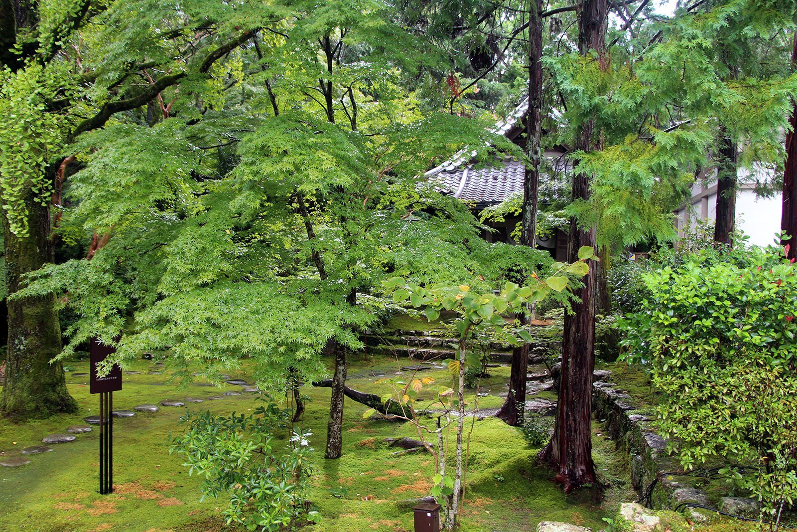 Chikurin-ji temple Shikoku_3