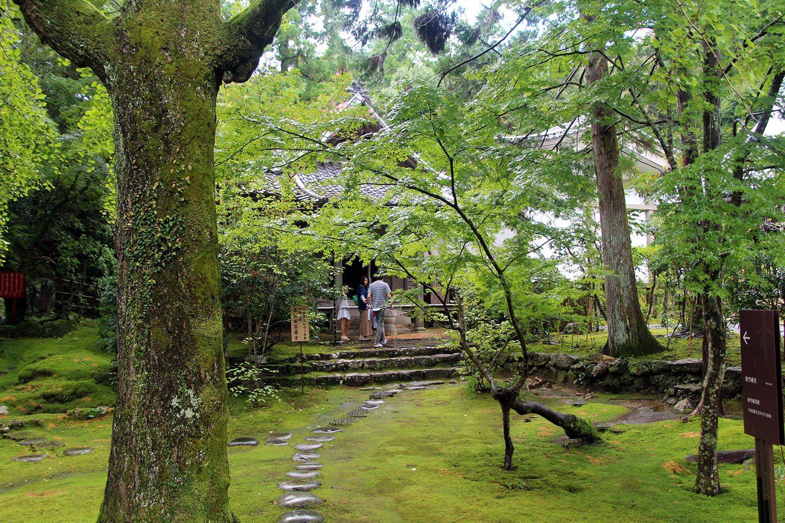 Chikurin-ji temple Shikoku_4