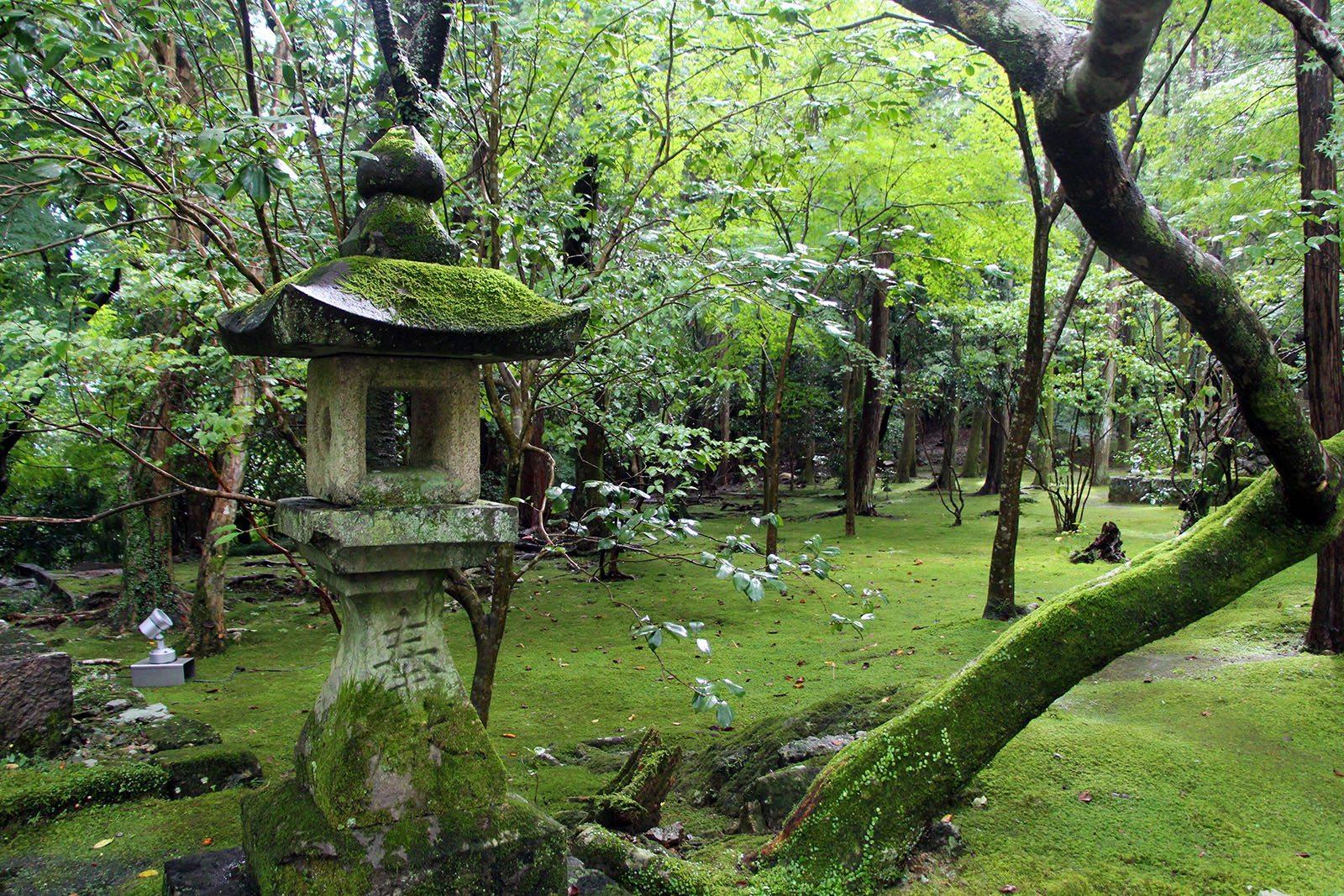 Chikurin-ji temple Shikoku_7