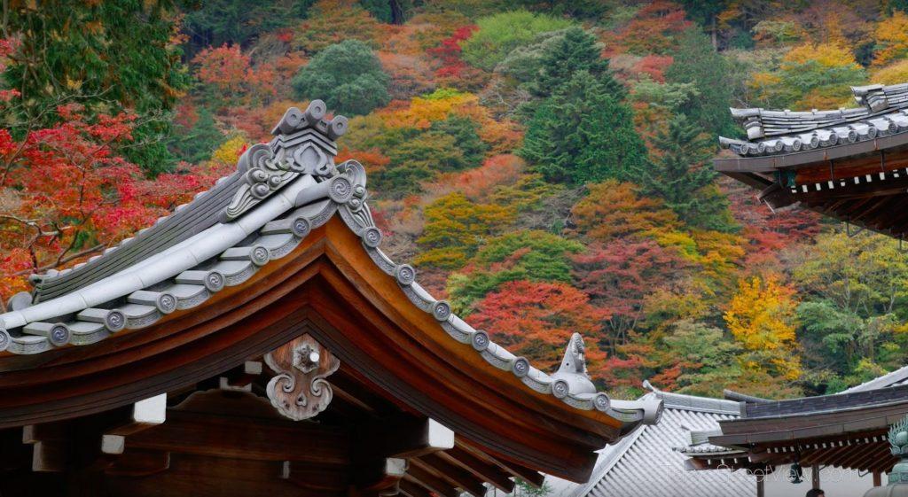 Kyoto Yoshimine-Dera_11