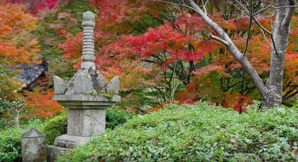 Kyoto Yoshimine-Dera_4