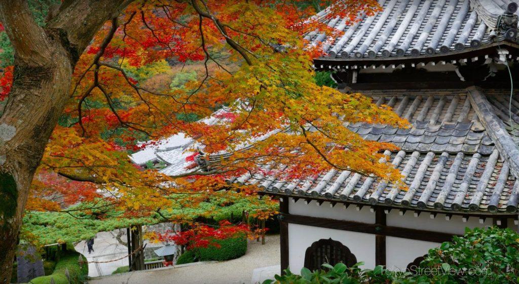 Kyoto Yoshimine-Dera_5