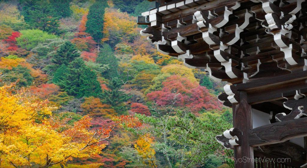 Kyoto Yoshimine-Dera_9