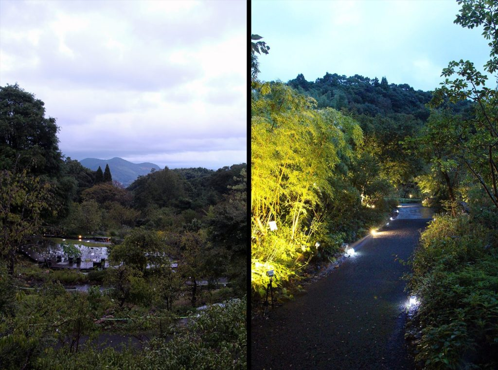 jardin botanique makino kochi japon