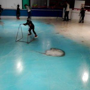 kita-kyushu patinoire poisson congeles japon_8