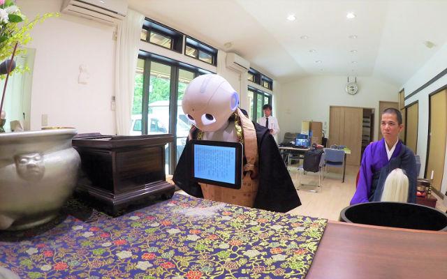 le robot pepper devient assistant lors d 39 obs ques au japon dozodomo. Black Bedroom Furniture Sets. Home Design Ideas